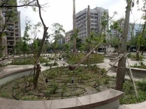 Etter tyfonen