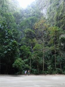 Høye fjell og skog på alle kanter