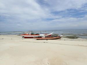 Båtene ligger godt på land enn så lenge