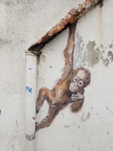 Orangutan dangling from a pipe (EZ)