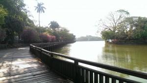Fra Kandawgyi Lake