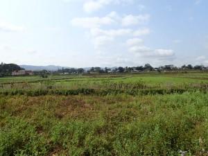Området er godt egnet for jordbruk