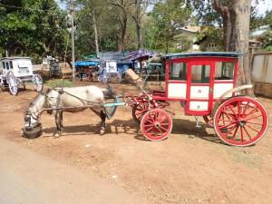 Hest og kjerre for den eventyrlystne